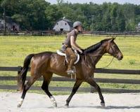 Young lady horseback riding royalty free stock photo