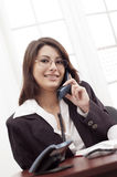 Young lady at the office. Young lady wearing eyeglasses and talking at the telephone in the office Royalty Free Stock Image