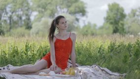 Young lady on picnic stock video