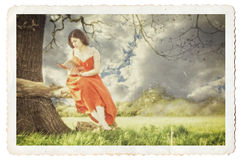 Young lady reading a book under a tree. Female reading book under tree, vintage photograph look. Textured, gritty detail with soft focus, cracks and borders Royalty Free Stock Image