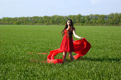 Young lady in red dress on field Stock Images
