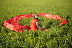 Young lady in red dress on field Royalty Free Stock Images