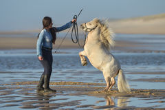 Young lady riding a pony at beach in early morning Stock Photo