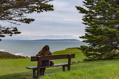 Young lady sitting on a bench looking out to sea. Stock Images