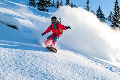 Young lady snowboarder Royalty Free Stock Images