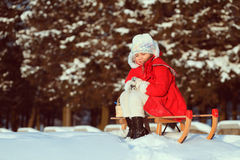 Young lady in winter forest Royalty Free Stock Images