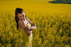 A young lady. In a yellow field Stock Image