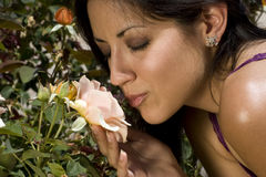 Young Latino Woman and Garden Rose Stock Photos
