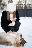 Young laughing girl stroking lying in the snow happy dog. Royalty Free Stock Images