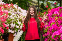 Young laughing women with happy face. Young laughing woman with happy face in a red blouse standing in a rose garden Royalty Free Stock Image