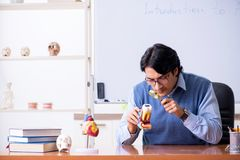 The young lecturer teacher teaching anatomy. Young lecturer teacher teaching anatomy royalty free stock images