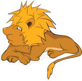 Young lion. Cartoon Stock Images