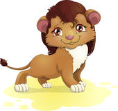 Young lion. Drawn on a white background stock illustration