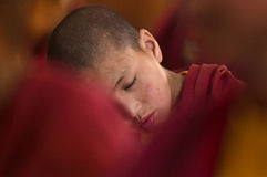 Young little child meditating with closed eyes at the regular puja. Young little child meditating /  dreaming  with closed eyes at the regular puja from Leh Stock Photo