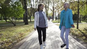 Young-looking caucasian grandmother and her teenage granddaughter dressed in casual clothes walking in the summer park. And chatting. Good relationship between stock video footage