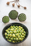 Young lotus seeds Royalty Free Stock Photography