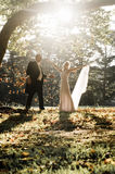 Young in love newly wed couple relaxing in field in golden afternoon sunlight. With falling leaves Royalty Free Stock Photography