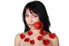 Young lovely brunette with a beautiful red rose Stock Photography