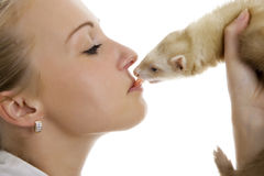 Young lovely woman with little ferret. Royalty Free Stock Image