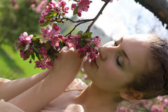 Young lovely woman in spring flowers Stock Photos