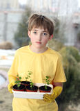 The young lover of plants. Young boy holding sprout in his hands Stock Photo