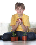 The young lover of plants Royalty Free Stock Image