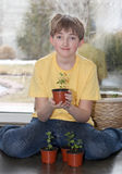 The young lover of plants. Young boy holding sprout in his hands Stock Image