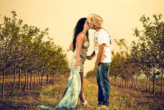 Young lovers. Young couple kissing at the apple trees alley Royalty Free Stock Photos