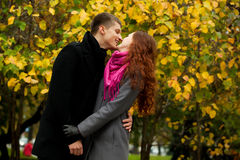 Young loving couple in autumn park Royalty Free Stock Images