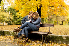 Young loving couple on a bench in autumn park Royalty Free Stock Images