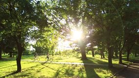 Young loving couple dating while riding bicycles in the park.  stock footage