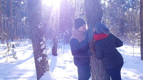 A young and loving couple is playing near the tree in the winter forest. They are happy because the fun and. The girl wearing a red scarf. They kiss and hug stock video footage