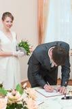 Young loving wedding couple Royalty Free Stock Image