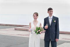 Young loving wedding couple Stock Photography