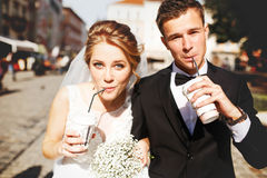 Young luxury gorgeous happy bride and groom on the background of Royalty Free Stock Image