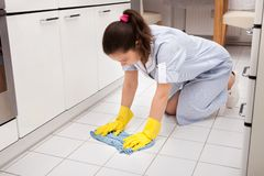 Young maid cleaning floor Stock Photos