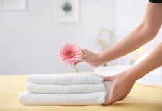 Young maid putting flower on stack of towels. In hotel room royalty free stock photography