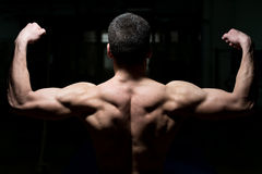 Young Male Athlete Flexing Back Muscles Stock Photography