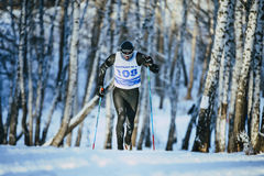 Young male athlete skiers race in winter forest classic style riding uphill Royalty Free Stock Photography