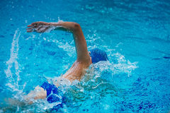 Young male athlete swimmer crawl Stock Photo