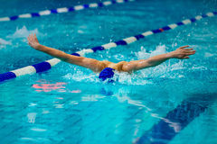 Young male athlete swimmer. Swims at competitions butterfly Stock Photography