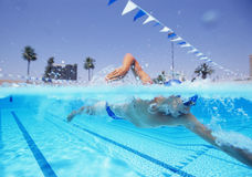 Young male athlete swimming in pool Stock Photography