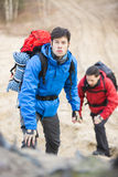 Young male backpackers hiking in forest Stock Photography