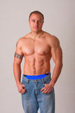 Young male body builder. Posing shirtless with blue jeans and muscular torso Royalty Free Stock Photos