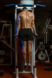 Young Male Bodybuilder Doing Heavy Weight Exercise For Triceps Royalty Free Stock Photography