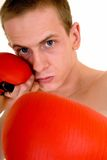 Young male boxer Stock Images