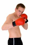Young male boxer Royalty Free Stock Photography