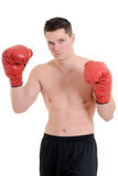 Young male boxer. Isolated young male boxer on white stock photo