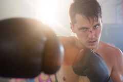 Young male boxer punching with bleeding nose royalty free stock photo