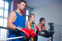 Young male boxer standing by female athletes stock images